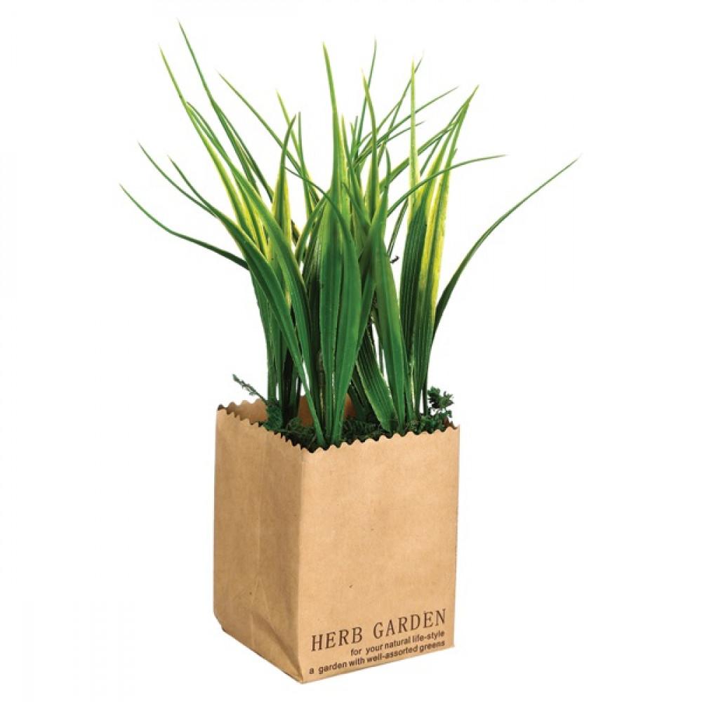 نبات زينة  110140
